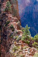 A section of the ridge you climb leading to Angels Landing